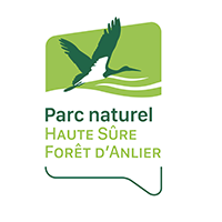 Parc naturel haute sure forêt Anlier